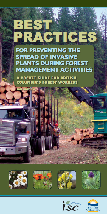 Image BMP forestry
