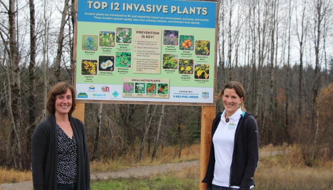 Invasive Species Interpretive Signage installed along Revelstoke Greenbelt