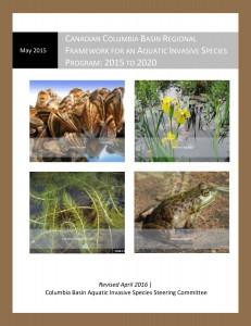 CB AIS Cover Page _1
