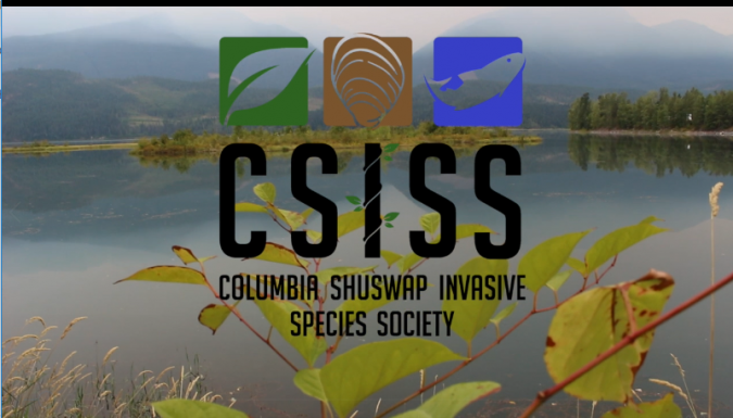 Check out the CSISS Strategic Plan for 2019-2024 and elected Board of Directors