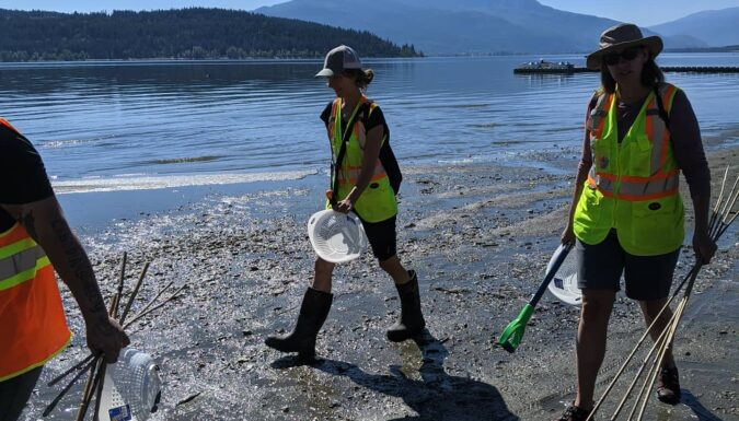 CSISS holds meeting to discuss invasive freshwater clams in Shuswap Lake